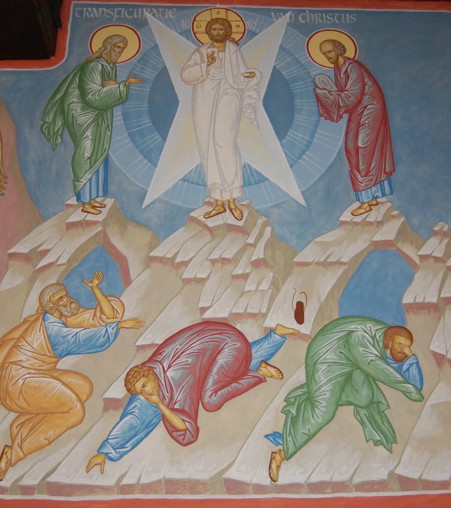 transfiguratie kopie